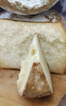 vendita formaggio sardo online